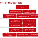 Tìm hiểu các vị trí trong Marketing – Ý nghĩa của từng bộ phận trong Marketing